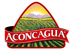 https://aconcaguafoods.cl/